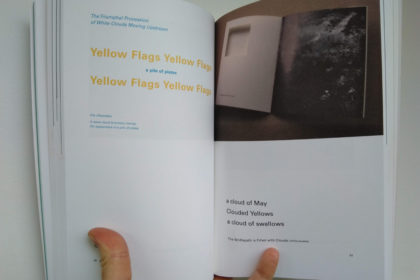 Two pages from the book Certain Trees, showing photos of works by Stuart Mills.