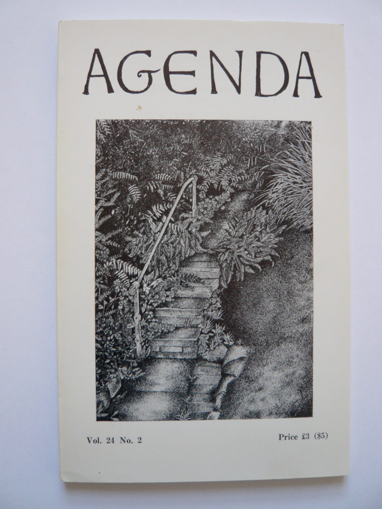 Cover of Agenda Magazine showing leafy pathway.