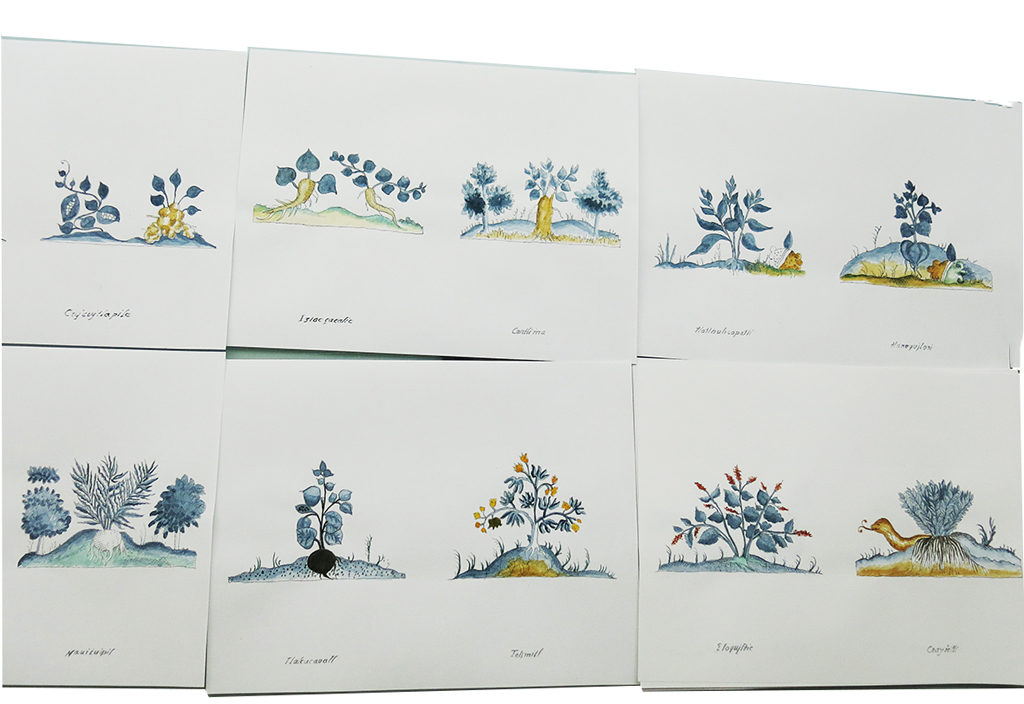 Spread of watercoloured images from new book by Martha Hellion available at Small Publishers Fair 2019.