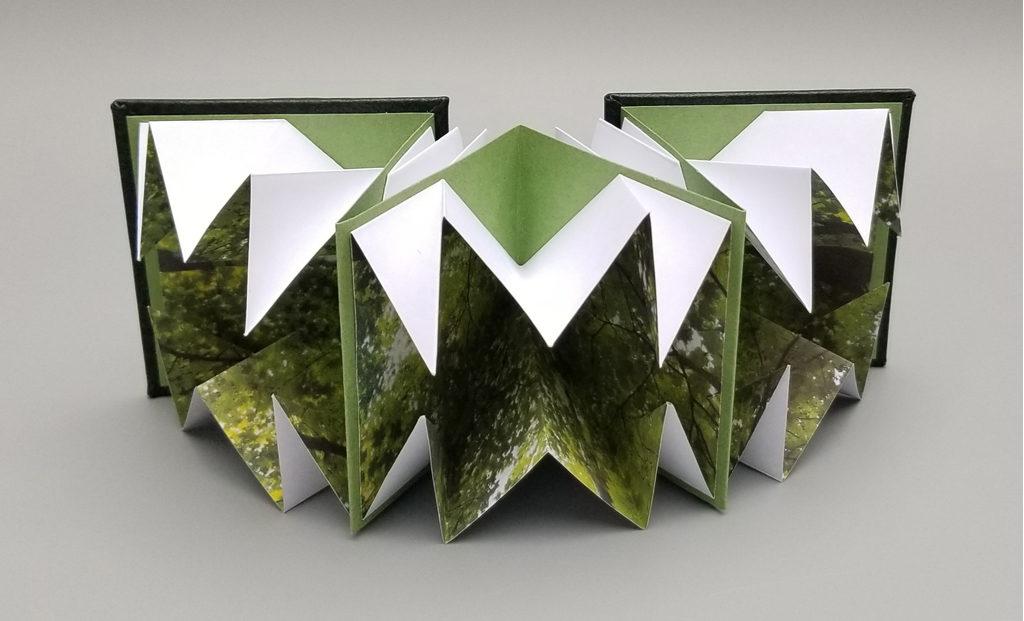 Artists book, concertina fold and organic greens.